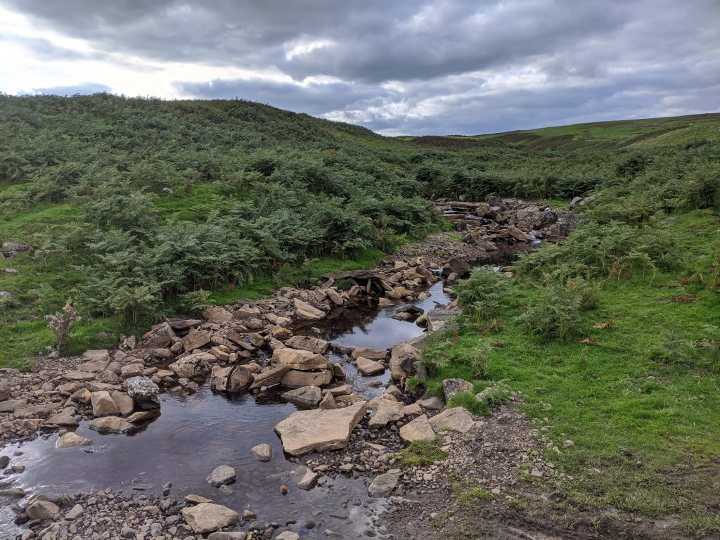 A stream flowing through rural landscape in Yorkshire